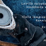 IPO-leiri 2018 rottweilereille