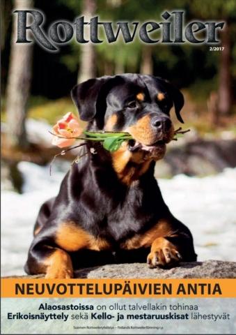 Rottweiler-lehti 2017
